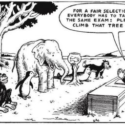 Celebrating Differences…