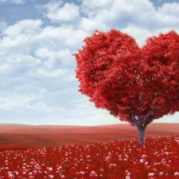 Urdu Couplets :)