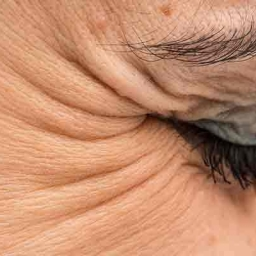 A blink in world's time…