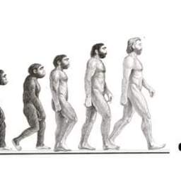 Our desires, Our extinction, Our stories…